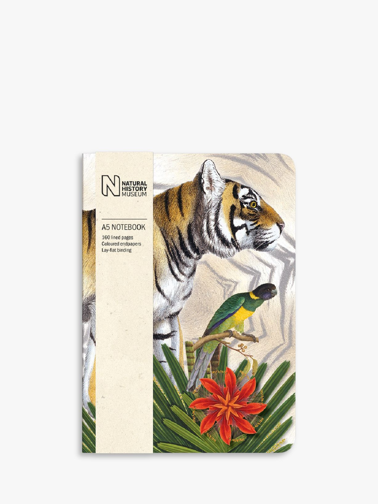 Museums & Galleries Museums & Galleries Natural History Museum A5 Tiger Notebook