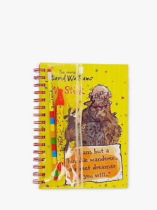 The World of David Walliams Mr Stink A5 Notebook & Writing Set