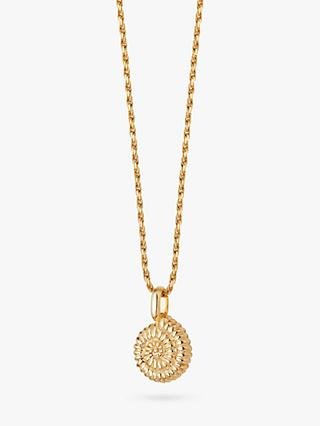 Daisy London Isla Textured Shell Pendant Necklace, Gold