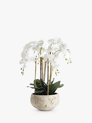 Artificial Flowers Plants John Lewis Partners