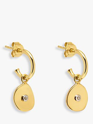 Lola Rose Curio Coin Huggie Drop Earrings, Gold