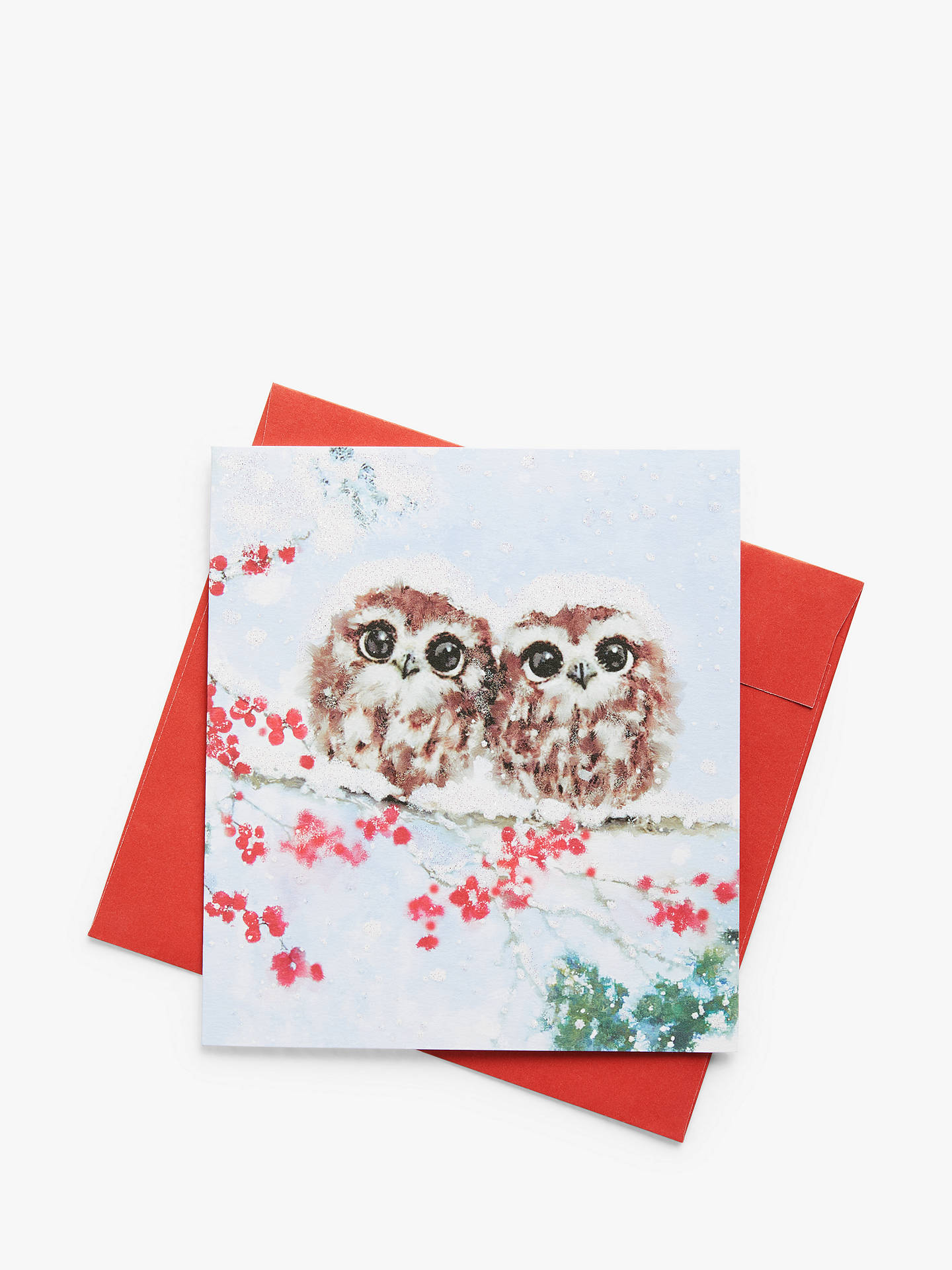 Christmas Cards Images.Woodmansterne Owls And Berry Charity Christmas Cards Pack Of 5