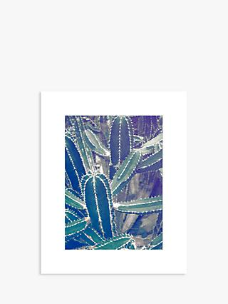 Graphic Cactus Unframed Prints, Set of 2, 50 x 40cm, Green