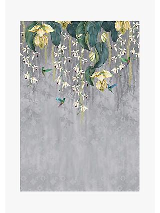 Osborne & Little Trailing Orchid Wallpaper