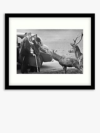 Getty Images - Winston Churchill in Richmond Park Wood Framed Print & Mount, 49.5 x 64.5cm