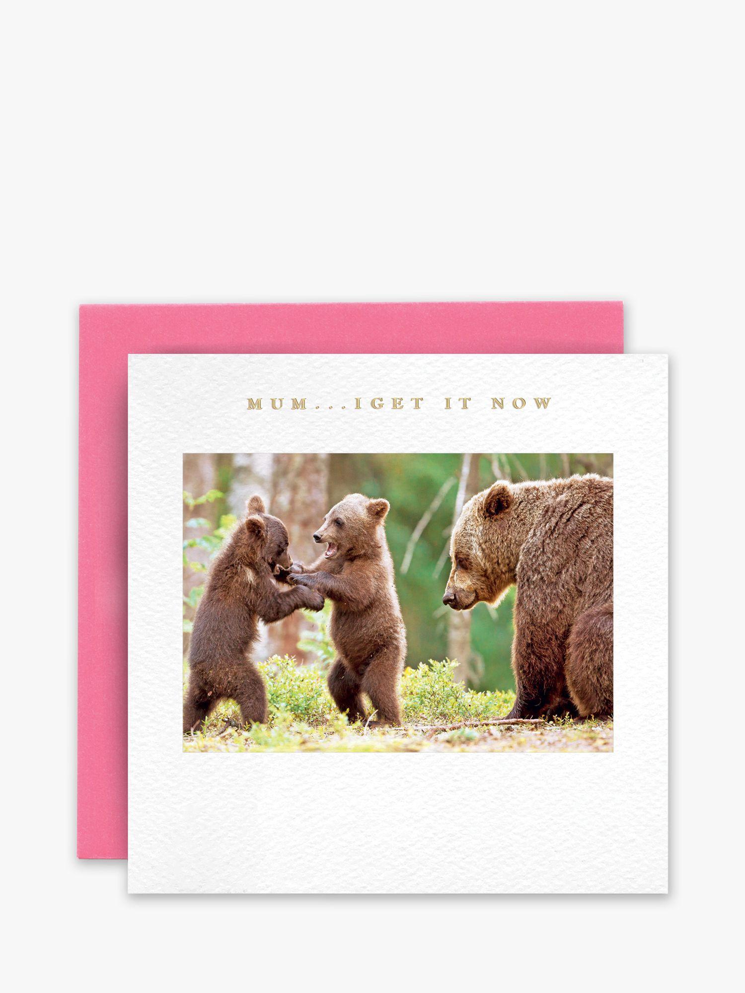 Susan O'Hanlon Susan O'Hanlon Bears Mother's Day Card