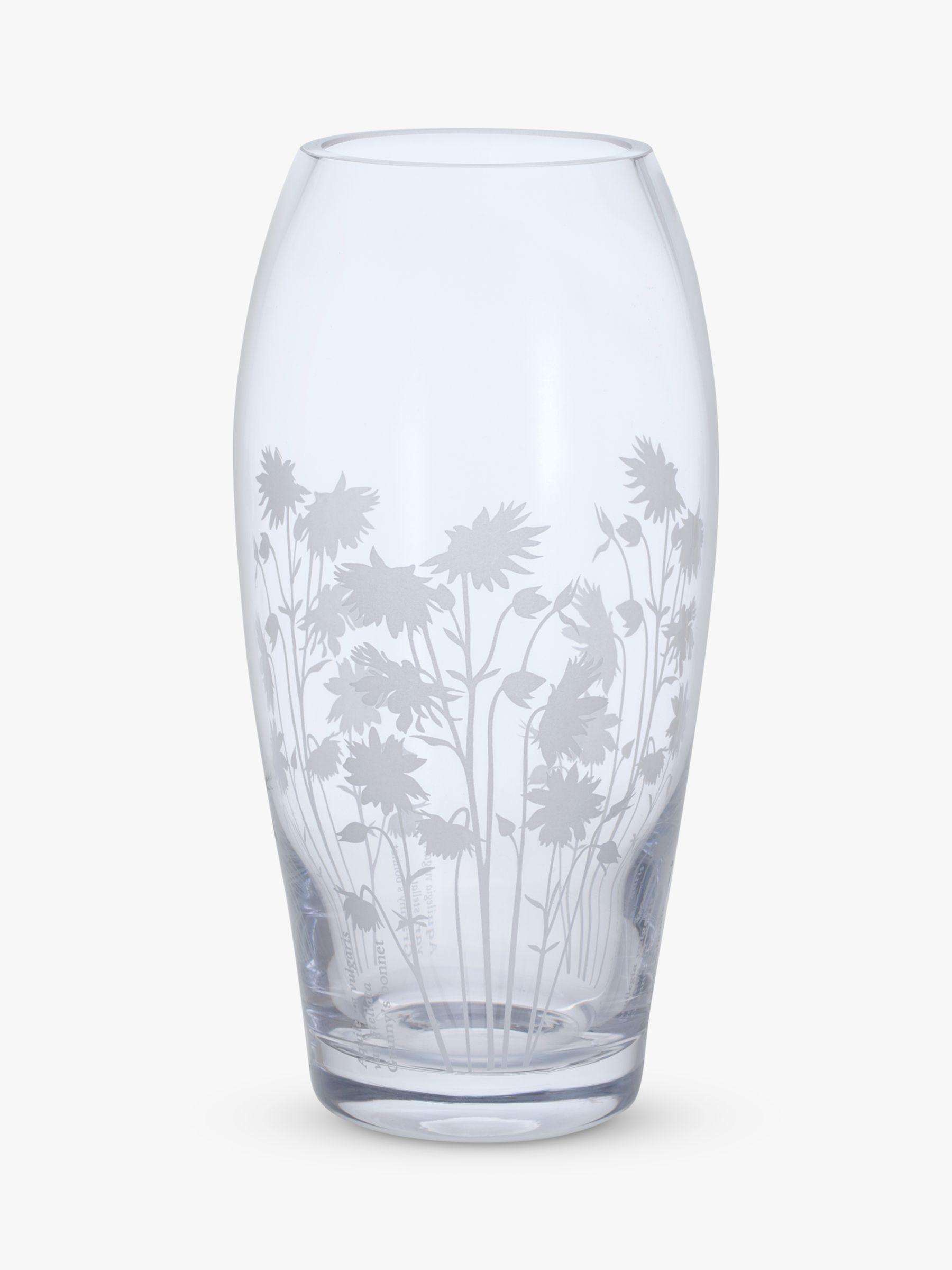 Dartington Crystal Dartington Crystal Bloom Aguilegia Glass Barrel Vase, H22cm, Clear