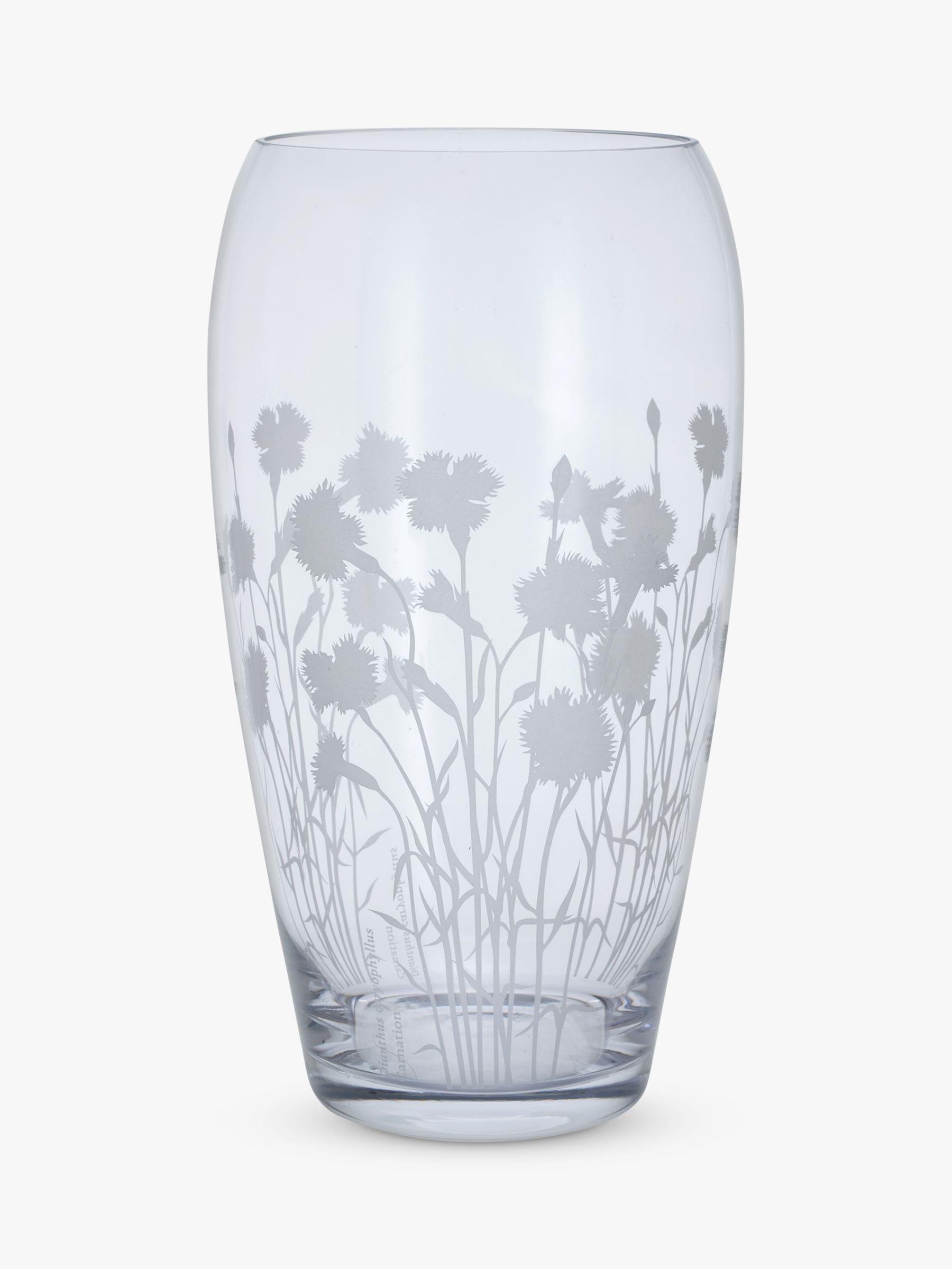 Dartington Crystal Dartington Crystal Bloom Dianthus Glass Vase, H30cm, Clear