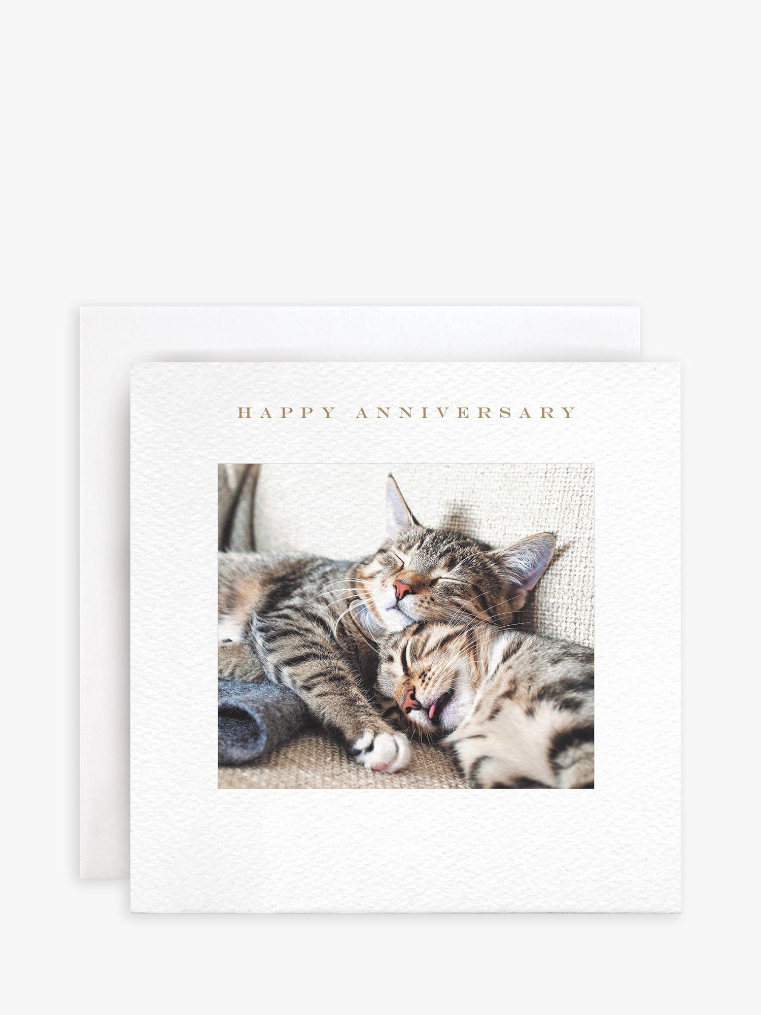 Susan O'Hanlon Susan O'Hanlon Cats Anniversary Card