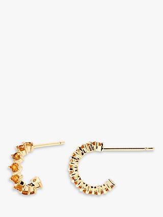 PDPAOLA Bird Cubic Zirconia Hoop Earrings