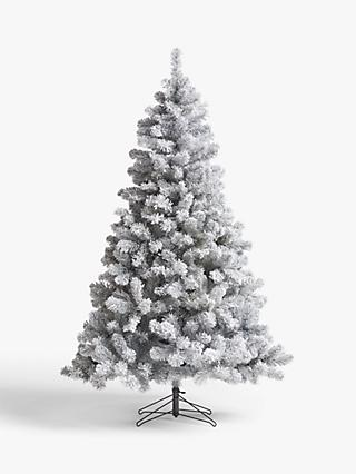 John Lewis & Partners Frosted Festive Fir Unlit Christmas Tree, 6ft
