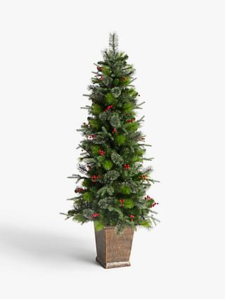 John Lewis & Partners Balmoral Potted Pre-Lit Christmas Tree, 6ft
