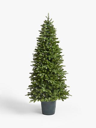 John Lewis & Partners Bala Green Potted Pre-lit Christmas Tree, 7ft