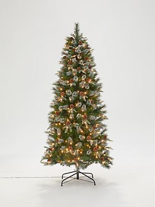 John Lewis & Partners Foxtail Pine Pre-lit Christmas Tree, 6.5ft