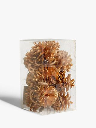 John Lewis & Partners Bloomsbury Pine Cone Tree Decorations, Pack of 12, Gold