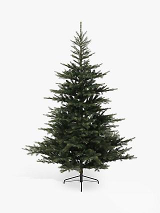 Kaemingk Grandis Fir Unlit Christmas Tree, 5ft