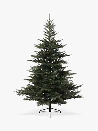 Kaemingk Grandis Fir Unlit Christmas Tree, 6ft