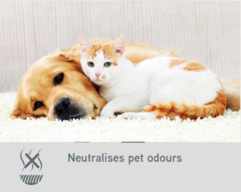 Neutralises pet odours