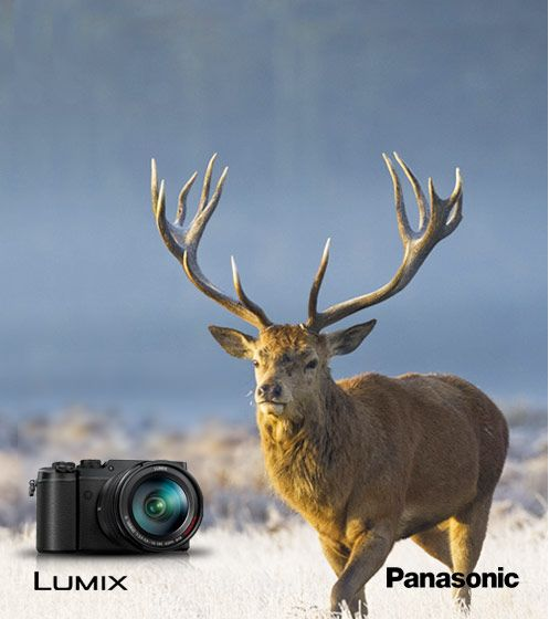 Claim up to £100 cashback with Panasonic