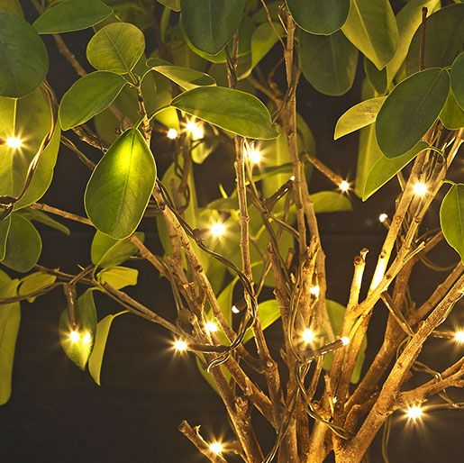 Outdoor String Lights John Lewis: Light Up The Night