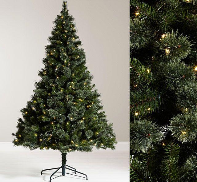 John Lewis Grand Tour 7ft Kashmir Pre-Lit Pine Christmas Tree
